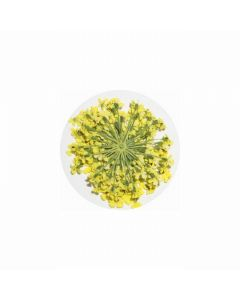 MATIERE Dried Flower Yellow 0.2g