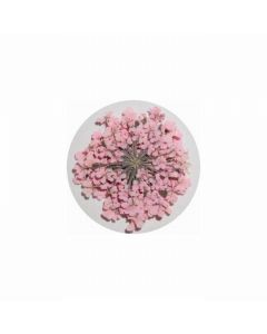 MATIERE Dried Flower Light Pink 0.2g